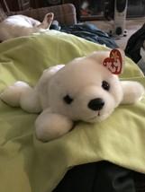 Chilly Beanie Buddy - $10.00