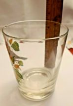 VINTAGE HAND PAINTED ROBIN OLD FASHION GLASS West Virginia Glass Spec. image 4