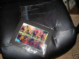 100 CLEAR BAGS 12x12 Sleeves Protectors Bag Envelopes I have so many sizes! - $65.44
