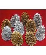12 Christmas set gold Pine Cones Hand Painted P... - $14.40