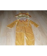 Infant Size 12-18 Months Velour Lion Halloween Costume Jumpsuit and Head... - $18.00