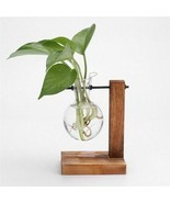 Vase Planter Hydroponic Plant Flower Pot Hanging With Wooden Tray Glass ... - $11.99+