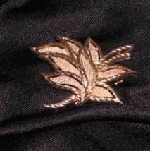 Vintage Trifari Goldtone Leaf Pin Brooch Signed - $16.91