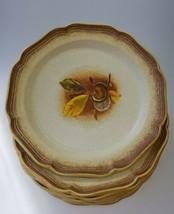 "7pcs. Mikasa Whole Wheat Wild Chestnut 10.75"" Plates E8004 EUC  - $68.99"