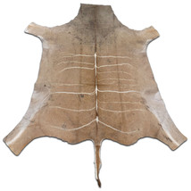 African Kudu Skin Antelope buck skin similar to cowhide rug Kudu Antelop... - $236.61