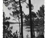 95 france landes hoosegor lake marin thru pines thumb155 crop