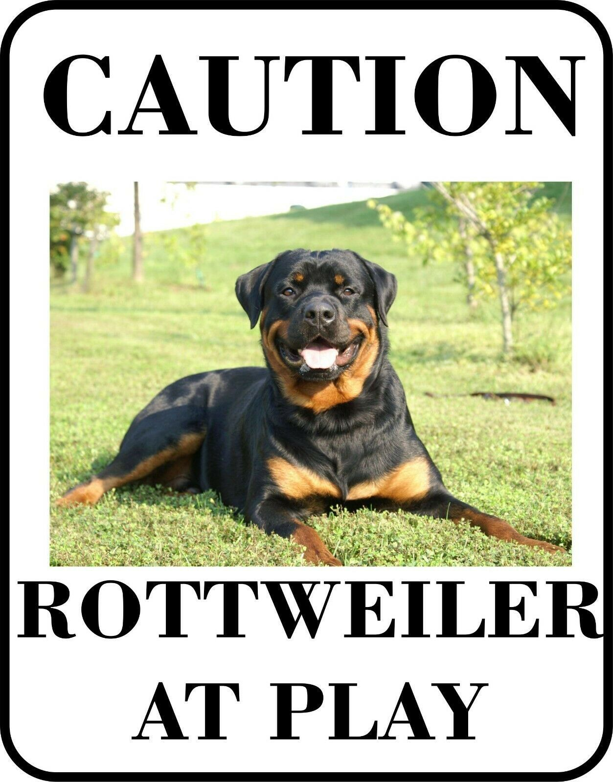 Primary image for #6 ROTTWEILER AT PLAY PET DOG SIGN