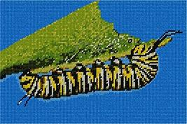 pepita Caterpillar Needlepoint Kit - $95.00