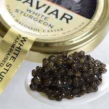 Italian White Sturgeon Caviar - Malossol, Farm Raised - 1 oz, glass jar - $92.92