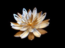 "Sarah Coventry Gold Tone White Sunburst  Pin Brooch 2"" - $12.53"
