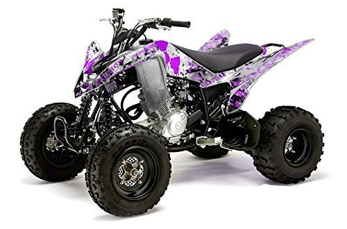 Amr racing yamaha raptor 125 atv all years meltdown for What year is my yamaha atv