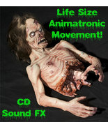 Life Size Deluxe Sound-ANIMATED-TWITCH ZOMBIE-TORSO-Haunted House Hallow... - $549.97