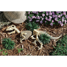 Mesozoic Raptor Archeological Excavated Replica Dinosaur Skeleton Garden... - ₨4,816.88 INR