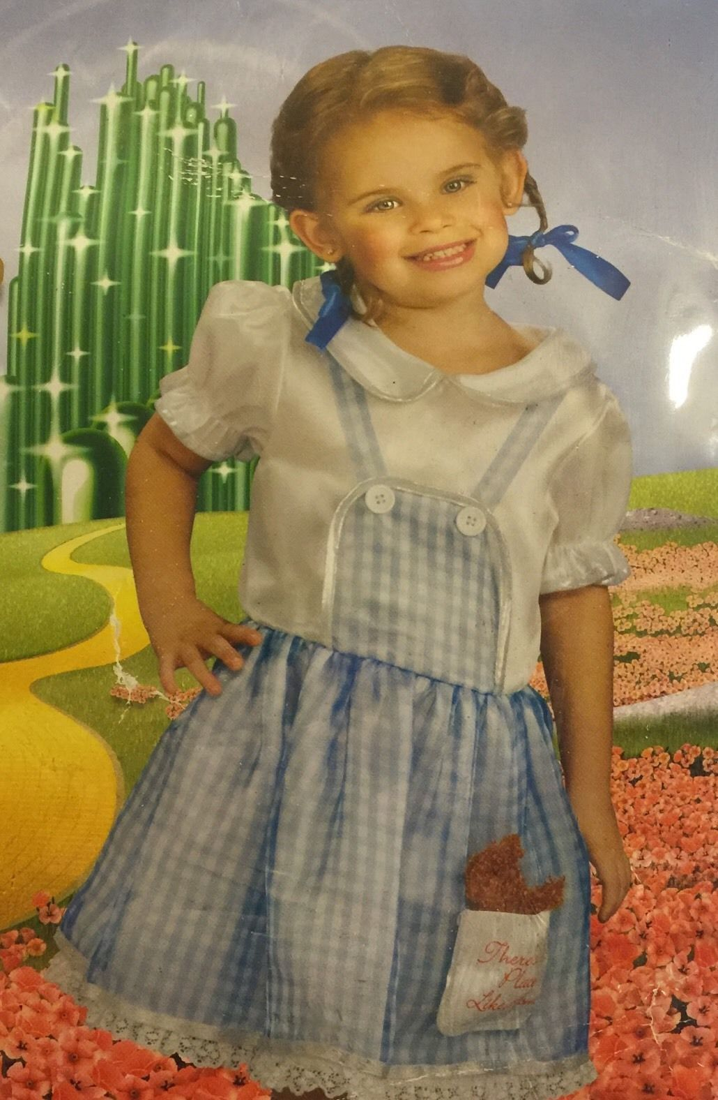 Dorothy The Wizard Of Oz Costume Toddler Size 2-4 Rubie`s Dress Hair Bows Toto