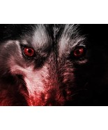 HELLHOUND CONJURING SPELL! PROTECTION! CONFIDENCE! STAMINA! PERSONAL POWER! - $47.99