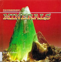 Minerals by Roy A. Gallant Kaleidoscope Book HC - $2.25