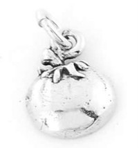 SILVER FRUIT OF THE SPIRIT-PATIENCE CHARM/PENDANT - $8.59