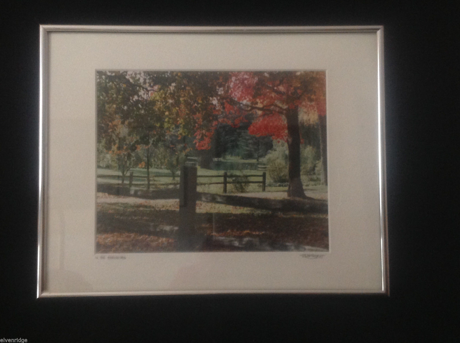 Framed Color Photograph In the Berkshires by Roso 2007