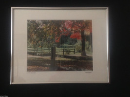 Framed Color Photograph In the Berkshires by Roso 2007 - $54.44