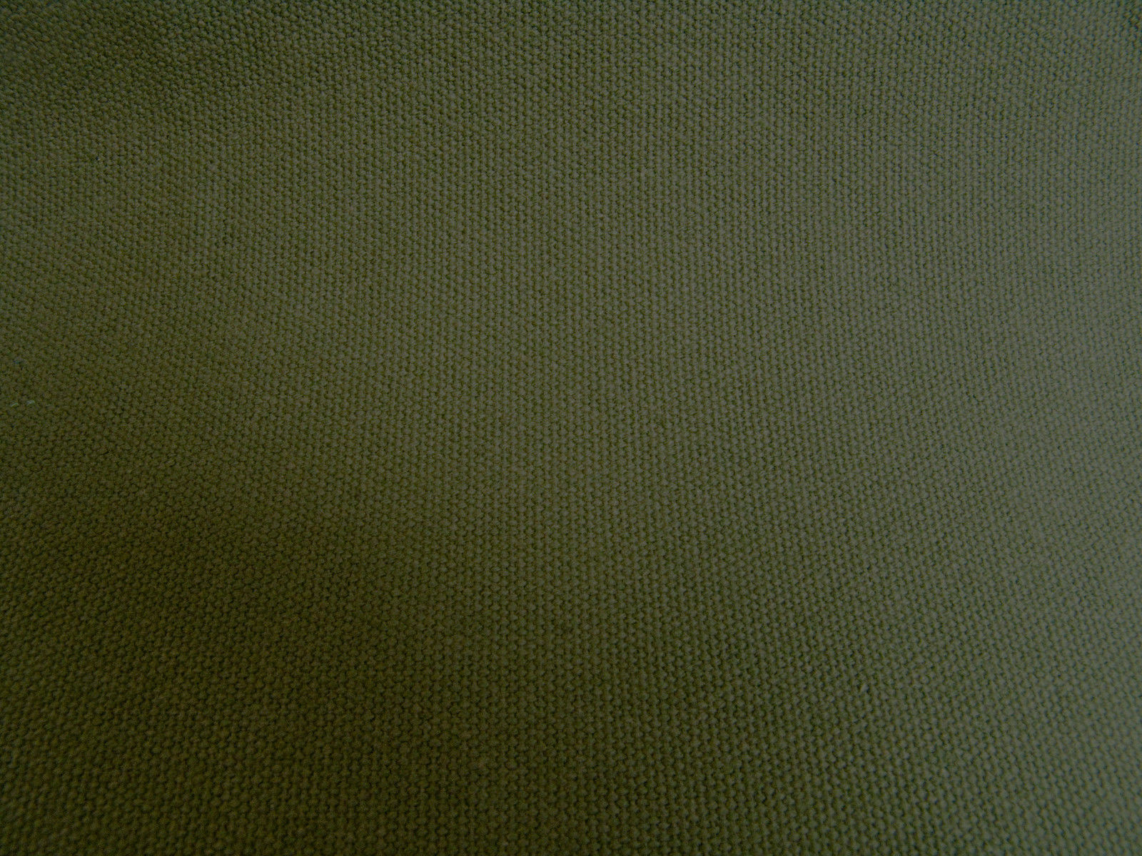 """Olive Drab Cotton Duck, #8 Chair Duck, 58½"""" Wide Sold By The Yard - 36"""" image 2"""