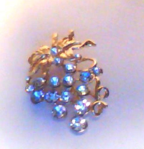 CRYSTAL GRAPE VINE PIN/BROOCH - GOLD OR SILVER