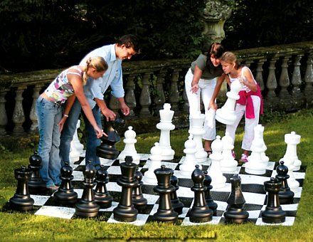 Basic Garden Chess Pieces - Chessmen, used for sale  USA