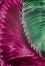 Encaustic Wax Abstract Art Print Pink And Green  - $22.00