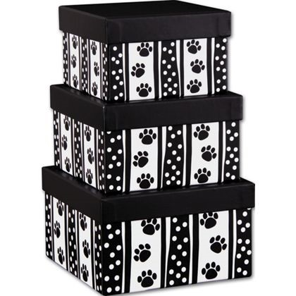 Primary image for Polka Dot Paws 3-Piece Nested Square Box Sets