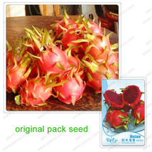 Red pitaya seeds,Red dragon fruit,Red flesh Dra... - $5.99
