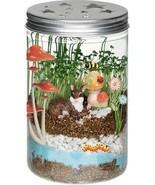 Fairy Garden Science Kit Glow in the Dark Terrarium Kids Grow Plants Mas... - $19.75