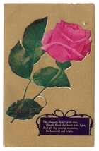 Motto Postcard 1909 Flowers Pink Rose Gold Background The Pleasure I Wish Thee - $4.99