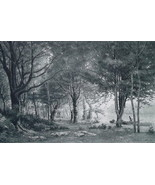 FOREST SOLITUDE Early Morning - 1888 Fine Antique Print - $21.60