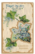 Vintage Greetings Postcard Forget Me Not Ivy Embossed Gold Trim Birn Bro... - $4.99