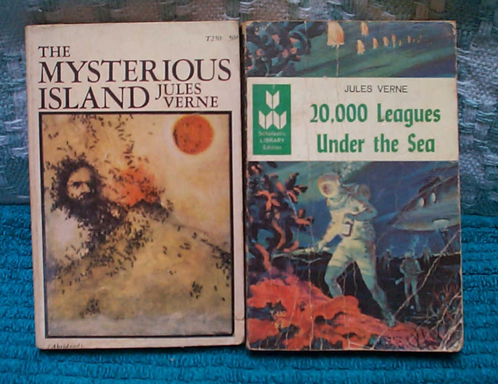 a book report on 20000 leagues under the sea a novel by jules verne 20,000 leagues under the sea jules verne was born in france in 1828 and always had a love for the sea he once tried to be a sea captain on a boat but things did not work out.