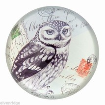 Exquisite American Owl  Glass Paperweight in Handsome Gift Box