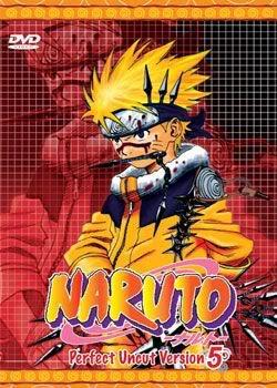 Naruto Perfect Uncut Part 5 (3 discs)