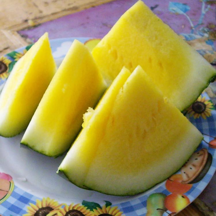 how to grow yellow watermelon seeds