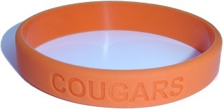 80 Custom Silicone Wristbands YOUR Color & Text & Image