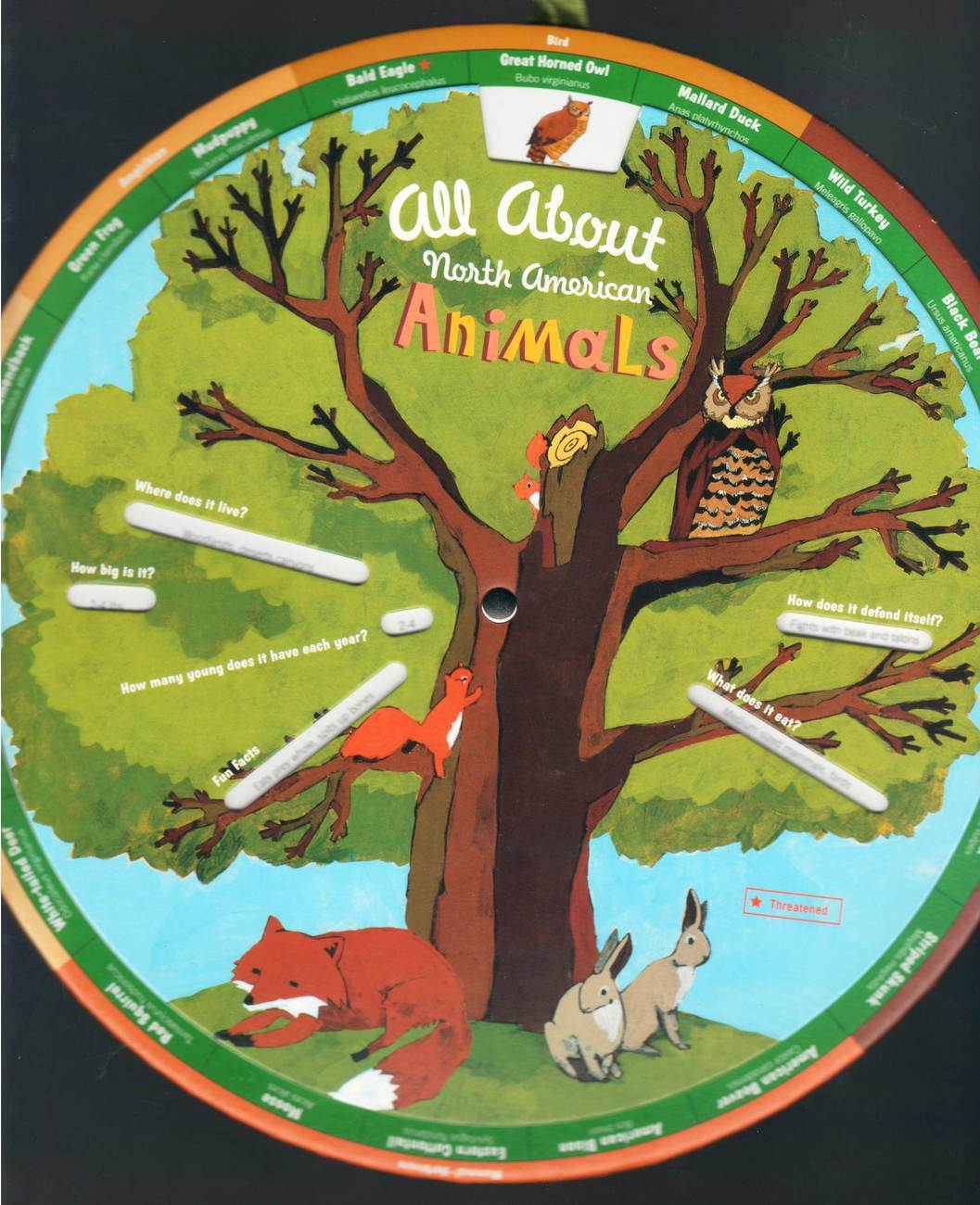 Around & About Learning Wheel - All About N. American Animal