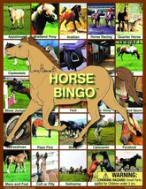 Horse Bingo Board Game - $13.83