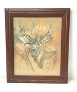 K Maroon Deer Buck in Woods Drawing Sketch 20x24 Framed Print 1978 Wall ... - $28.95