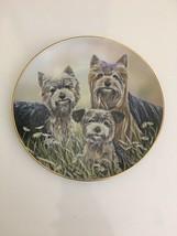 Danbury Mint Anticipation by Paul Doyle Yorkshire Terriers Plate Proud P... - $69.29