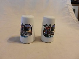 Polystone Florida Souvenir Salt & Pepper Shakers Gator, Beach & Flowers - $23.75