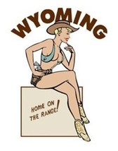 Travel Humor Hot Rat Rod Vinyl Decal Wyoming Pinup #58 - $2.95