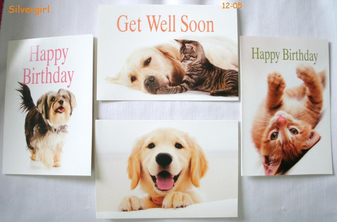 Ifaw 4 pk mixed dog cat greeting cards