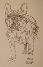 FRENCH BULLDOG DOG ART PRINT #46 DRAWN FROM WORDS Kline adds your dogs n... - $49.95
