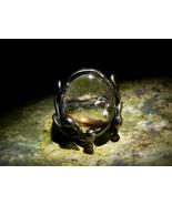 RARE HYBRID SILVERY GOLD DRAGON Sterling Golden Venus Hair Ring izida haunted - $212.00
