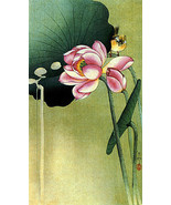 Songbird and Lotus 30x44 Japanese Art Print by ... - $89.09