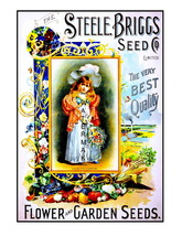 Steele Briggs Seed Vintage 1898 11 x 8.5 inch Advertising Giclee CANVAS ... - $14.95