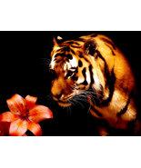 Tiger_lily_by_tsukku_thumbtall